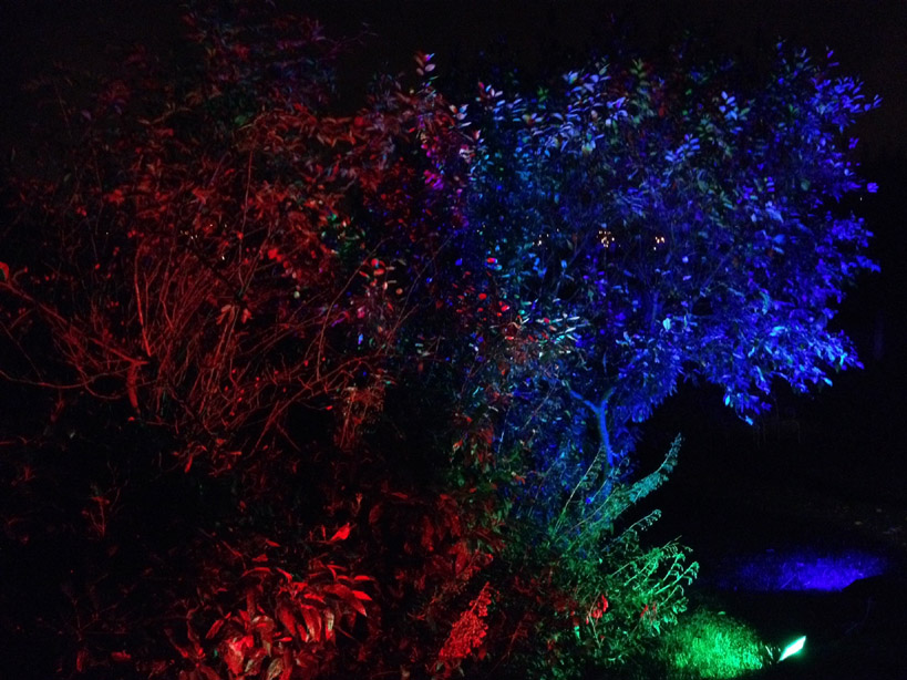 Outdoor lighting hire birmingham garden lighting hire for your hire outdoor lighting for your garden party in birmingham aloadofball Image collections
